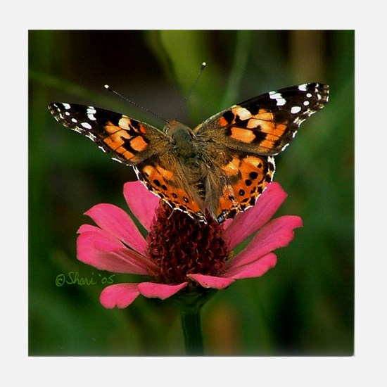 3988 American Painted Lady Tile Coaster
