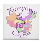 Xianyang China Tile Coaster