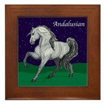 Royal Andalusian Framed Tile