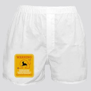 Mexican Hairless Dog Boxer Shorts