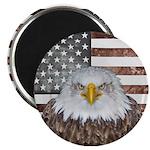 American Bald Eagle Patriot Magnets
