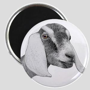 Nubian Goat Sketch Magnet