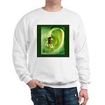 Go Green Fairy Spreads the Wo Sweatshirt