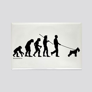 Schnauzer Evolution Rectangle Magnet (10 pack)