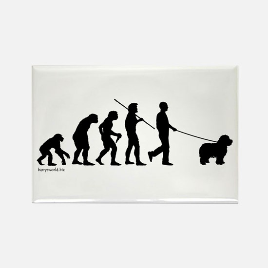 Sheepdog Evolution Rectangle Magnet (100 pack)