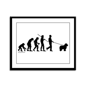 Sheepdog Evolution Framed Panel Print