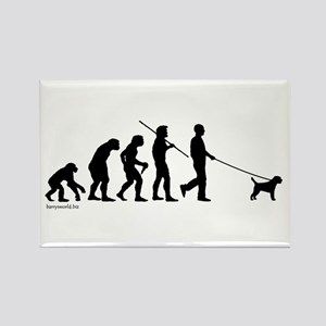 Border Terrier Evolution Rectangle Magnet (10 pack