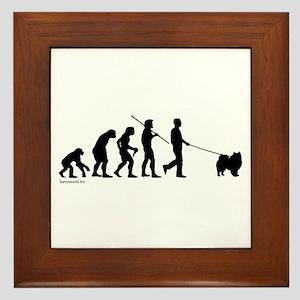 Eskimo Evolution Framed Tile