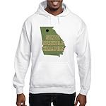 Georgia State Cornhole Champi Hooded Sweatshirt