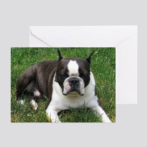 Chip the Boston Terrier Greeting Cards (Package of
