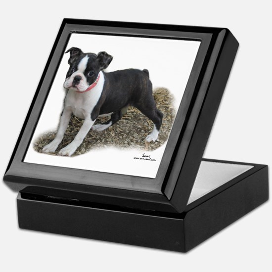 Boston Terrier Pup 1 Keepsake Box