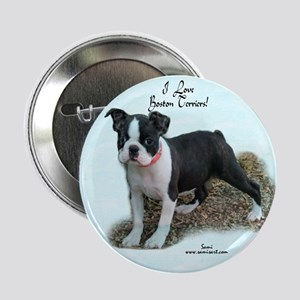 Boston Terrier Pup 1 Button