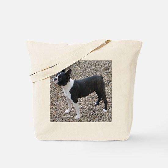 Boston Terrier Pup2 Tote Bag