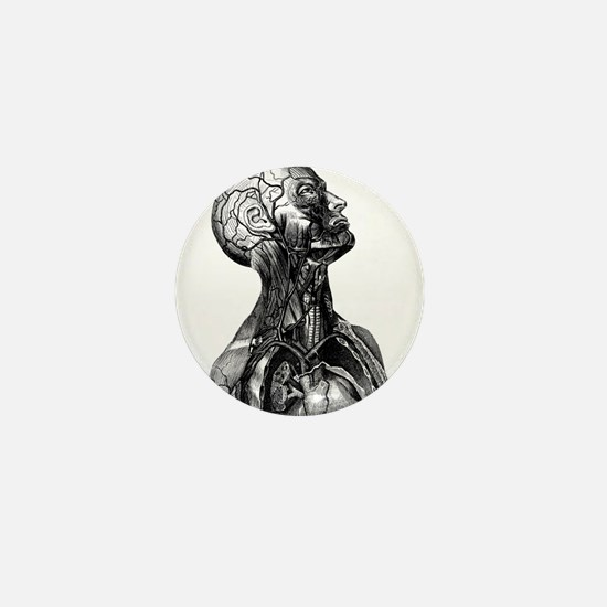Anatomy Mini Button