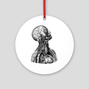 Anatomy Ornament (Round)