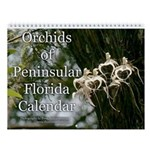 Wall Calendar: Orchids Of Pensinsular Florida