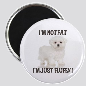 Maltese Puppy Magnet