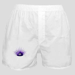 Sea Urchin Boxer Shorts