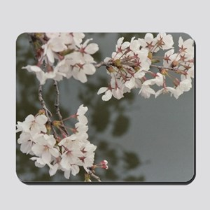 WATER BLOSSOMS Mousepad