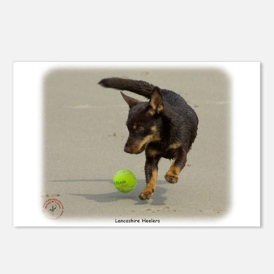 Lancashire Heeler 9R056D-248 Postcards (Package of