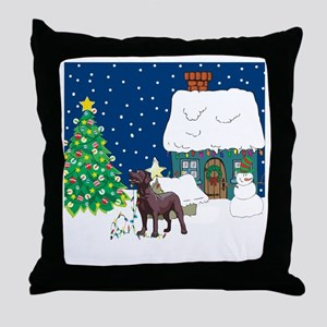 Christmas Lights Lab Throw Pillow