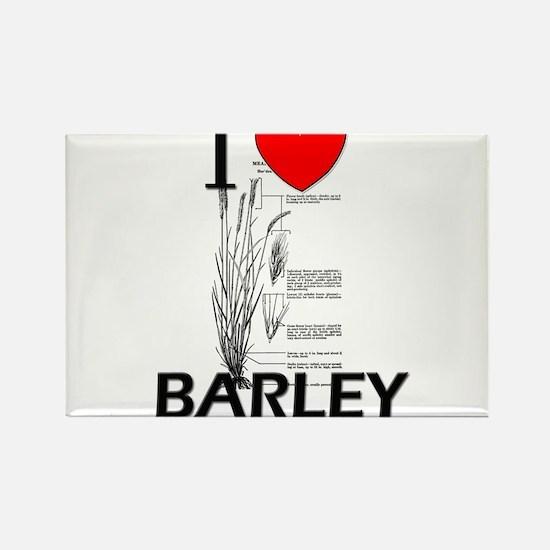 I Love Barley Rectangle Magnet