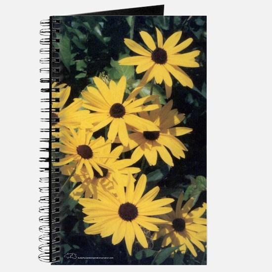 Black-Eyed Susan Flowers Notebook/Journal
