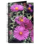 New England Aster Flowers and Bee Notebook/Journal