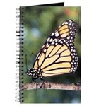Monarch Butterfly Notebook/Journal