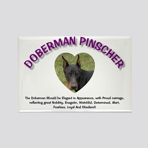 Doberman Rectangle Magnet (10 pack)