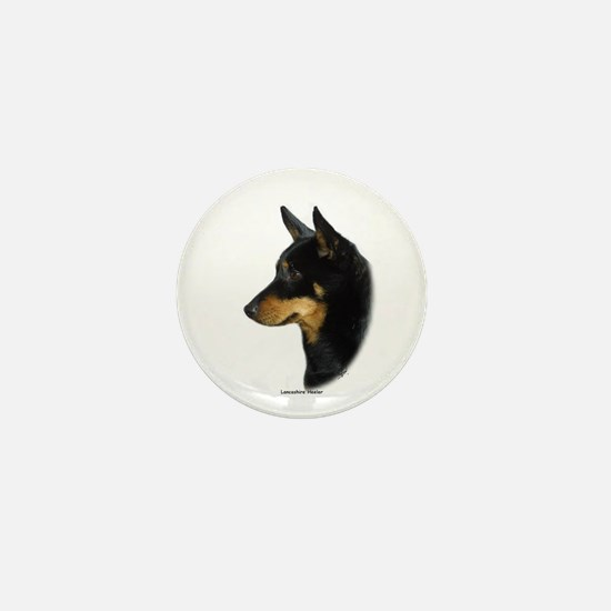 Lancashire Heeler 9W085D-090 Mini Button