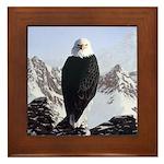 Eminence - Eagle Framed Tile
