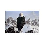 Eminence - Eagle Rectangle Magnet