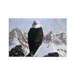 Eminence - Eagle Rectangle Magnet (100 pack)