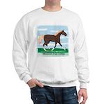 Missouri Fox Trot Horse Sweatshirt