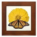 Monarch Butterfly and Yellow Zinnia Framed Tile