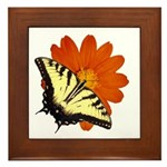 Tiger Swallowtail Butterfly and Flower Framed Tile