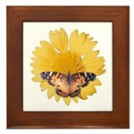 American Lady Butterfly and Flower Framed Tile