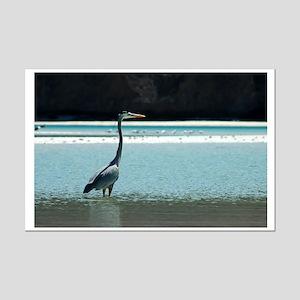 Great Blue Heron Mini Poster Print