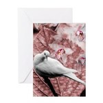 Dove and Orchid Greeting Card