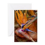 Birds of Paradise Flower Greeting Card