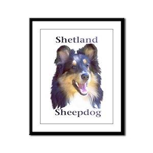Shetland Sheepdog Framed Panel Print