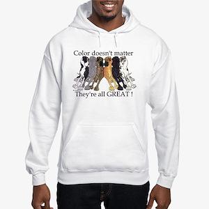 N6 Color Doesn't Matter Hooded Sweatshirt