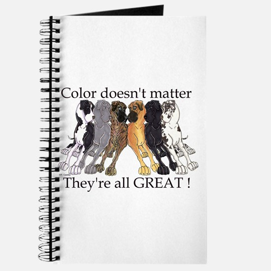 N6 Color Doesn't Matter Journal