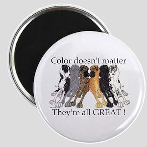N6 Color Doesn't Matter Magnet