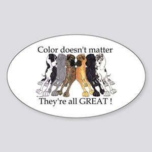 N6 Color Doesn't Matter Oval Sticker