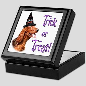 Irish Setter Trick Keepsake Box