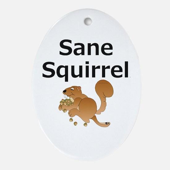 Sane Squirrel Oval Ornament