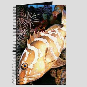 Grouper Journal