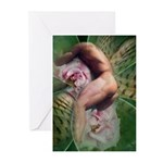 Erotic Male Nude Greeting Cards (Pk of 10)